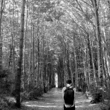 """Bakardadea basoan"". Autora: Maria Jimenez. Ganadora categoría 2 Concurso de fotografia ""Mirando la Soledad"" MatiaZaleak"